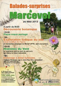 Affiche Ass Protection Site Marcevol.jpeg
