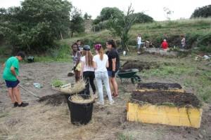 Création de plantations en lasagne